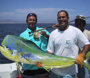 Cabo san lucas fishing charters for Cabo san lucas fishing season