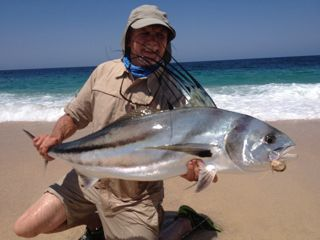 Welcome for Rooster fish cabo