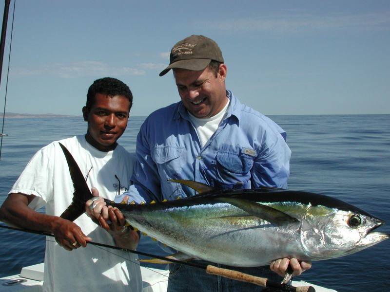 Fish seasons and species for Cabo san lucas fishing season