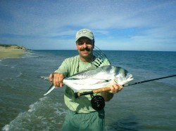 Peter Bowers roosterfish
